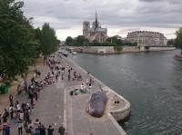 une baleine à Paris