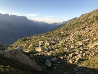 Forêt de granite